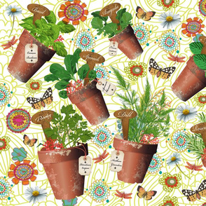 Mon Petit Jardin d Herbes Aromatiques