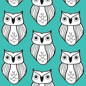 Blue-Green Owl