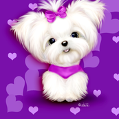 Maltese purple hearts