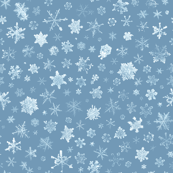 photographic snowflakes on wintry blue