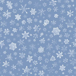 photographic snowflakes on frosty blue