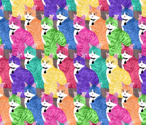 Regelwyn Rainbow