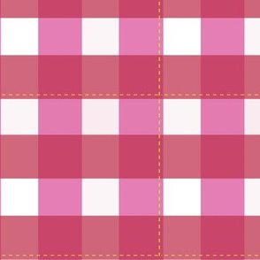 Picnic Gingham_red/pink