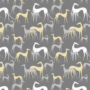 sighthounds grey yellow SMALLER