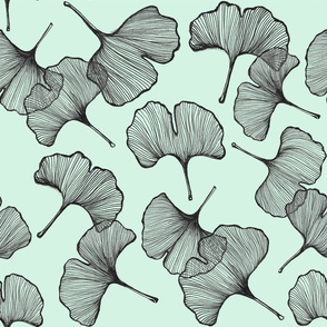 Ginkgo in Mint
