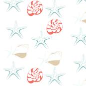 Seashells Starfish Coral Aqua Blue