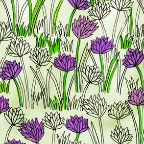A Field of Chives
