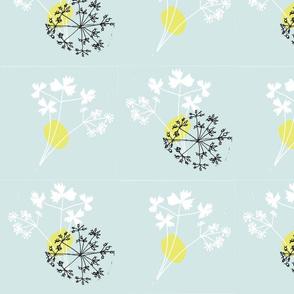 coriander-ed