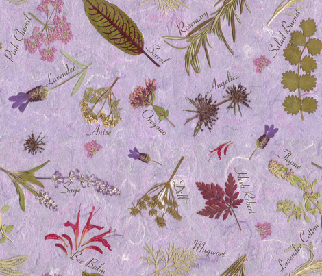 Garden of Herbs fabric by mypetalpress on Spoonflower - custom fabric