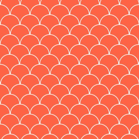 Rscalloped_pattern_coral_shop_preview