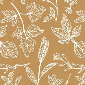 Herb Leaves Brown