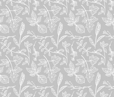 Herb Leaves Grey