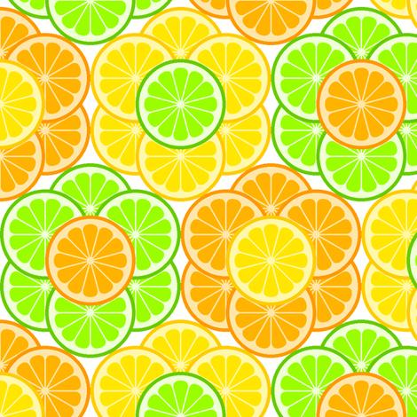 citrus slice flowers 3