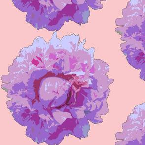 peony big-pink