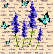 Rrrrrrsage-flowers_ed_shop_thumb