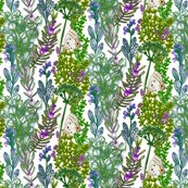 Rrparsley_sage_rosemary_and_thyme_shop_thumb