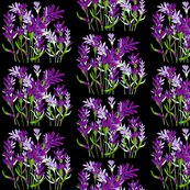 Rrlavender_shop_thumb