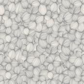 Cloves in Cream