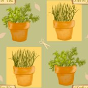 Rrherbs4u_shop_thumb