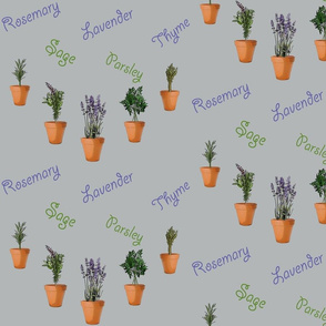Rrherbs_in_pots_fabric_shop_thumb