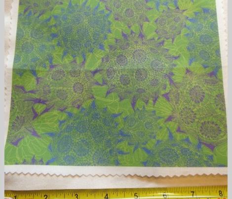 A Sempervivum Summer (Lime Green)