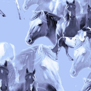 horses_in_blue