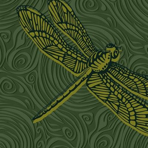 Dragonfly damselfly dragonfly - green