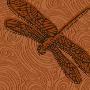 Dragonfly damselfly dragonfly - brown