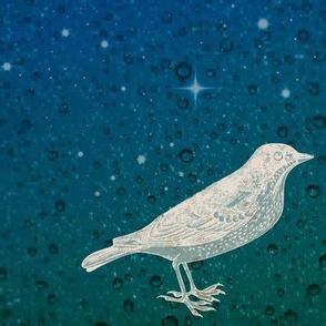 Sea and Sky Bird