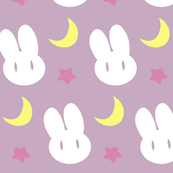 Sailor Moon Crystal Usagi's Sheets (small version)