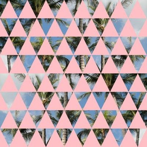 Vince || triangles palm trees tropical photo photograph geometric palms pastel pink hawaii