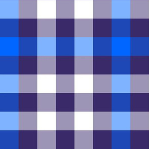 Blue Sixth Doctor Plaid