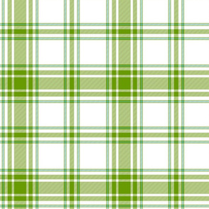 hiker's plaid - leaf green and white