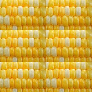corn_3_2014