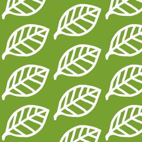 Leaf white on aqua-ch-ch