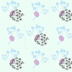 coriander...