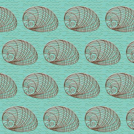 Seashell on textured Aqua