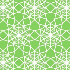 Paper Snowflake Web   -White on Light Green
