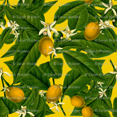 Lemon Botanical ~ Whist ~ Small