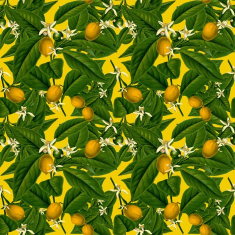 Rlemon_botanical___whist_____peacoquette_designs___copyright_2014_shop_preview