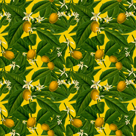 Lemon Botanical ~ Whist ~ Small fabric by peacoquettedesigns on Spoonflower - custom fabric
