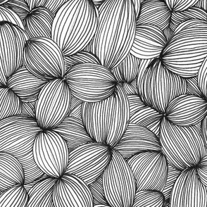 Cloves in Black & White
