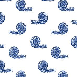 ammonite blue 50