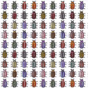 WatercolorBeetles1