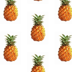 Large Pineapples