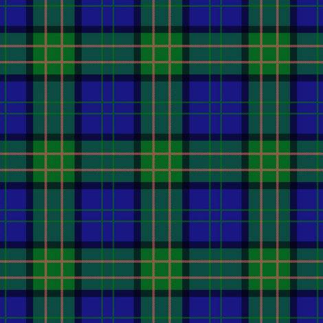 highland games tartan ~ small