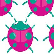 Lady bug 001