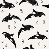 Orca Whales by Andrea Lauren