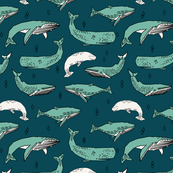 Whales by Andrea Lauren