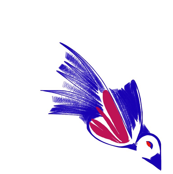 Blue Bird Red Breast